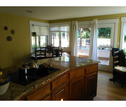 Sunny master bedroom with private bathroom for rent