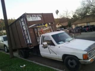 Trashs hauling services