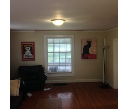 UT/Downtown Room available - Students, Pets