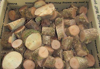 100% Hawaiian OHIA Wood Chips~Hardwood BBQ Flavor Additive