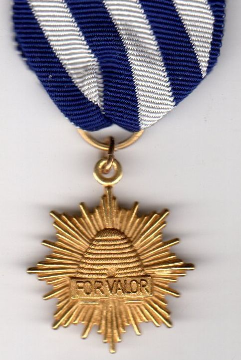 Utah National Guard Valor Medal on First Type Ribbon Army
