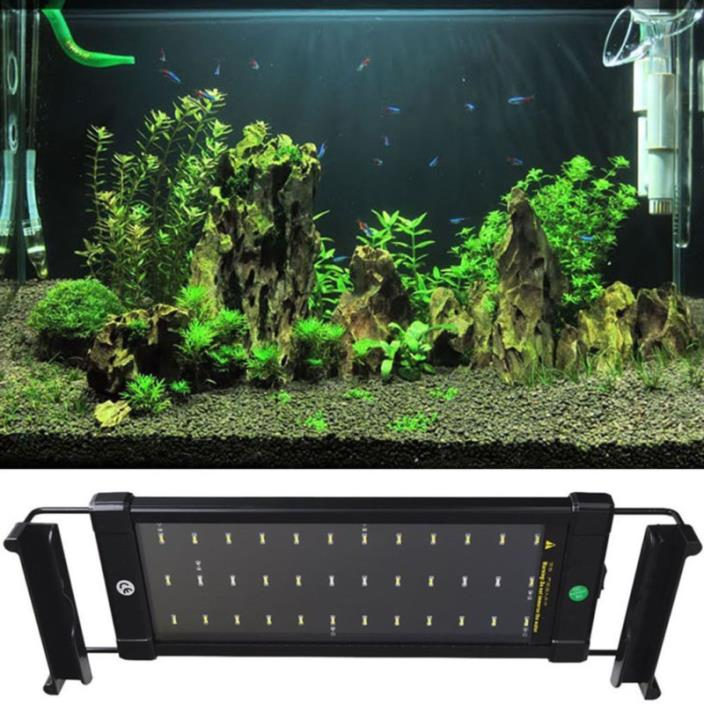 Saltwater aquarium fish tank for sale classifieds for Fish tank light hood