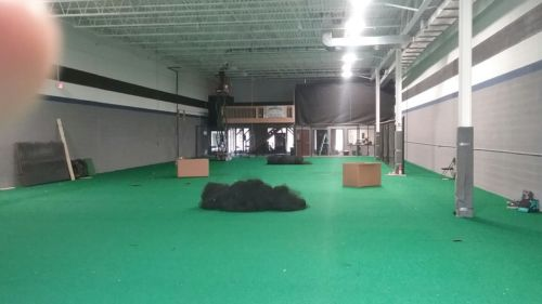 3000 sq ft of premium heavy duty indoor grass turf carpet