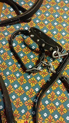 leather dog collars and leashes.