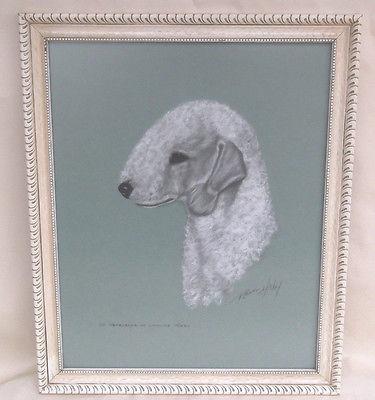 Pastel Bedlington Terrier Dog Portrait Signed ROBERT HICKEY Framed Reseller US