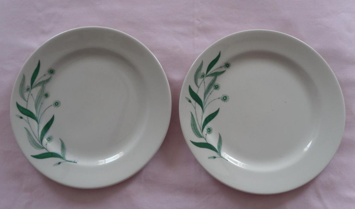 2 Sterling China Dinner Plates Summer Daze Restaurant Ware Green Field Flowers