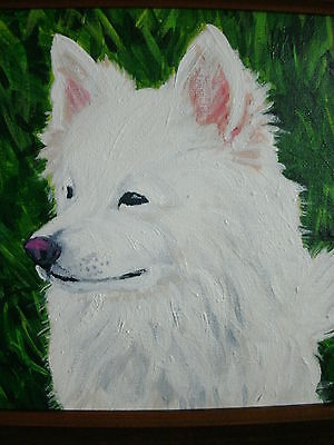 Wolfie by Rachel Rosenoff  American Eskimo Dog Age10 Original Painting on Canvas
