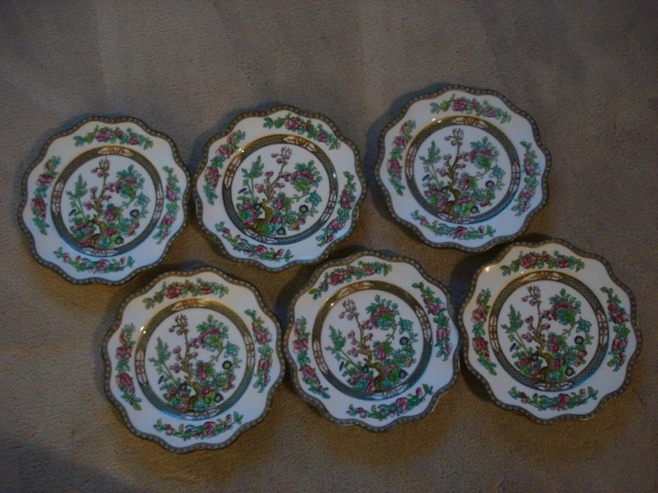 6 - COALPORT INDIAN TREE - England - Dessert Plates - 8