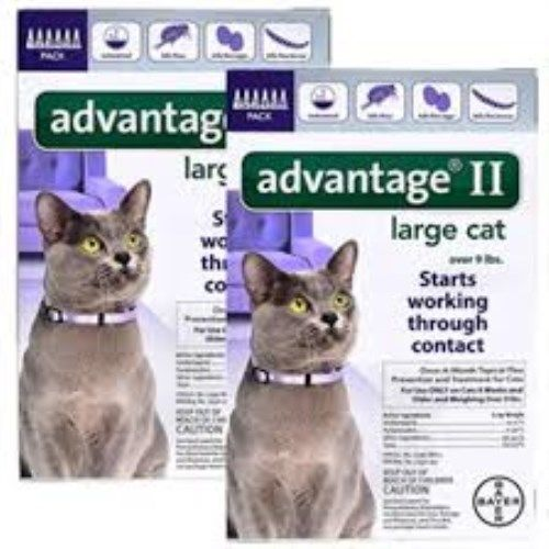 Bayer Advantage II for Large Cats Over 9 lbs Flea Control 12 Month EPA Approved!