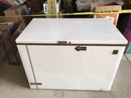 GE (15.8 Cu. Ft.) Food Freezer