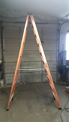 Fiberglass 10 foot Step Ladder