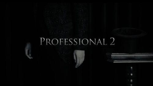 Professional 2 by Kim Hyun Soo - DVD - Magic Tricks