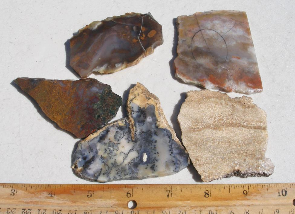 SL-63  x5 Rough Slabs Amethyst Sage Petrified Wood Maury Mountain Moss Agate etc