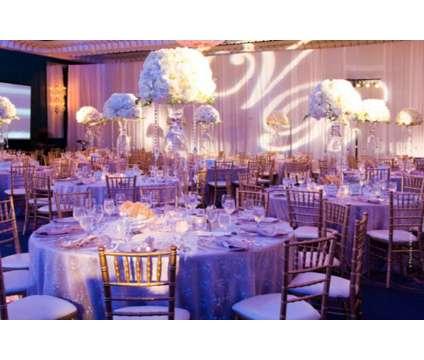 Wedding & Event- Planning & Design
