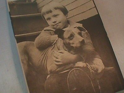 DOG Photo POSTCARD RPPC Pitbull CHILD Girl