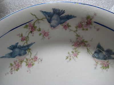 Vintage BlueBird China Salem Blue Birds Ribbon Floral SET 2 Bowls