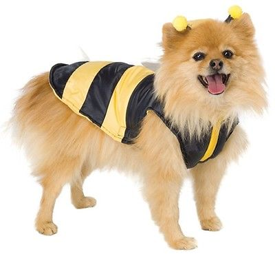 Leg Avenue Dog Costumes Bumble Bee Costume Size XSMALL