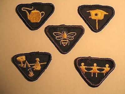 GIRL GUIDES BROWNIES CANADA 5 VINTAGE MERIT BADGES  SCOUTS