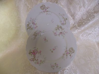 Two Theo Haviland Limoges Dinner Plates Schleiger 144A Green Scrolls Pink Roses
