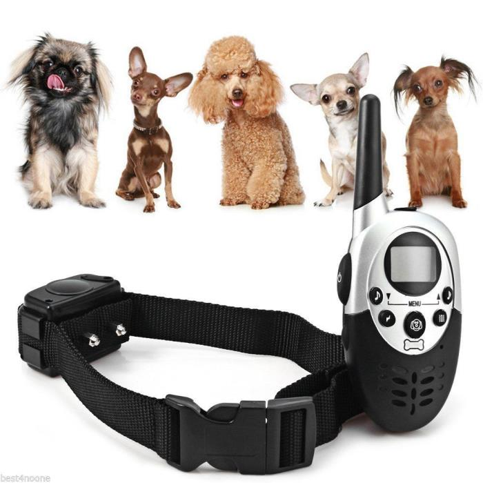 Trainer M613 1000m LCD Rechargeable Remote Control Dog Training Collar