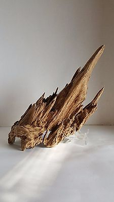 OLD PIECE AGARWOOD FROM VIETNAM , NICE FORM , VERY NICE SCENT....500g