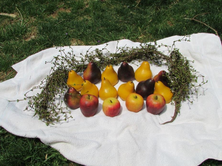 Decorative Faux Apples, Pears, etc.