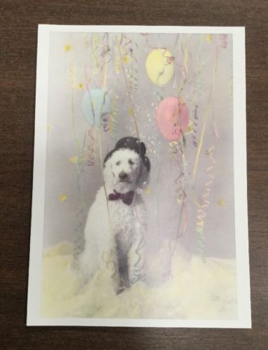 Party Poodle Birthday Card-Set Of 12 With Envelopes-Blank Inside