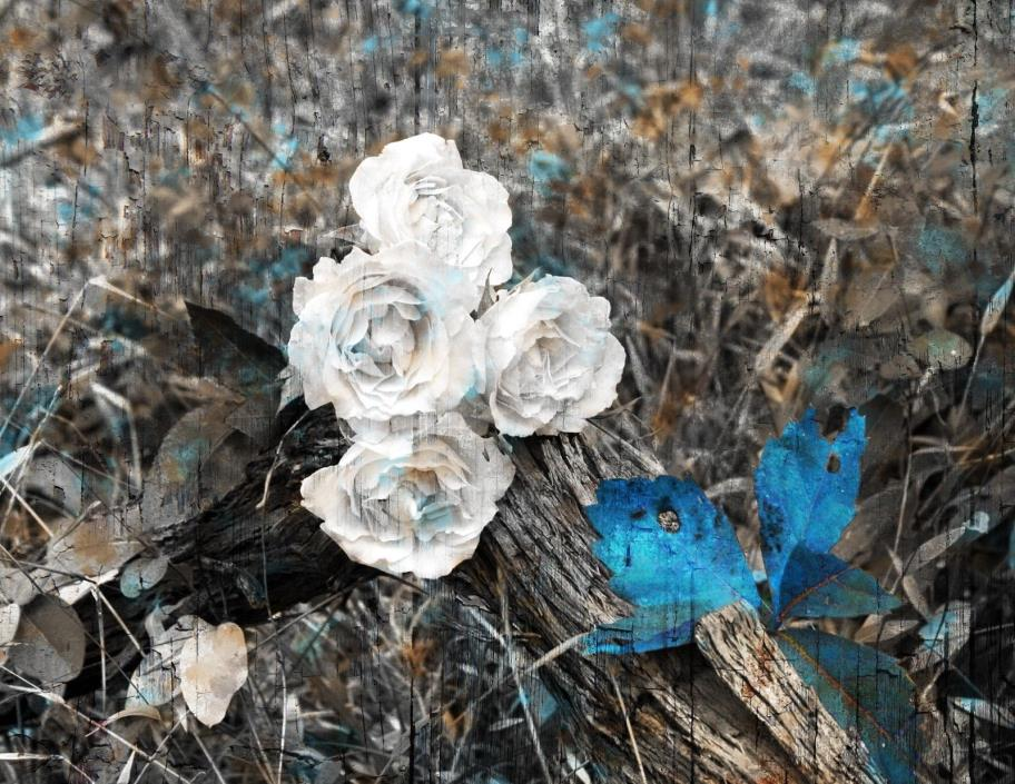 Rustic Brown Blue Home Decor, Rose Flowers Wall Art Matted Picture