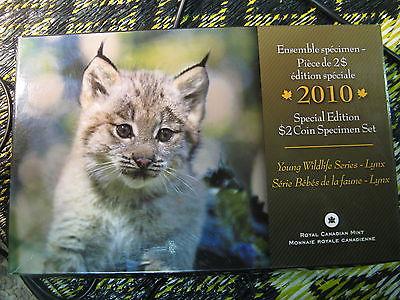 RARE 2010 CANADA SPECIMEN LYNX SET SPECIAL EDITION YOUNG WILDLIFE SERIES SET