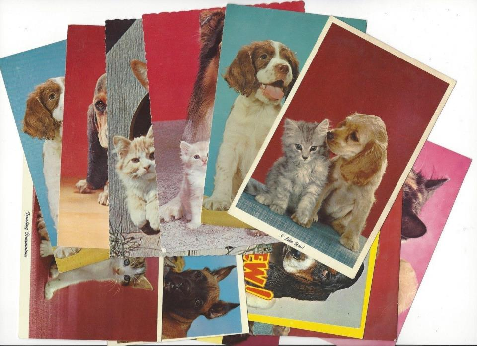 12 Vintage Dog and Cat Unused Postcards Puppy Kitten