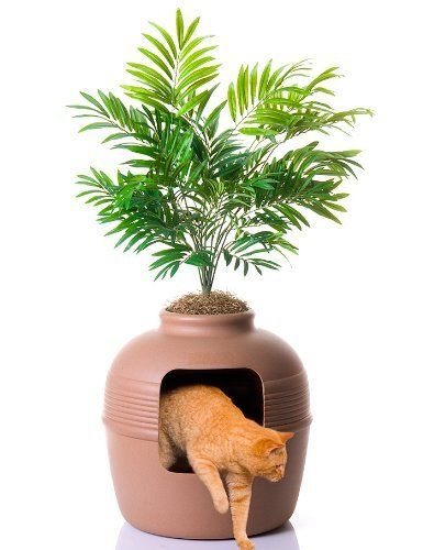 Hidden Cat Litter Box in Decorative Plant