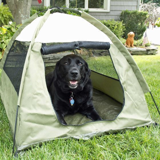 Pet Tent Outdoor House Dog Cat Portable Bed Kennel Water Resistant Camp Shelter