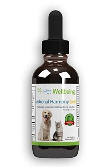 USED  Pet Wellbeing - Adrenal Harmony Gold For Dogs- Natural Support Cushings