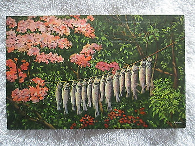 Vintage A Day's Trout Catch Greetings From Bear Lake, Michigan Linen Postcard