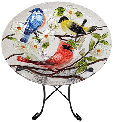 Continental Art Center CAC2412801 Bird Bath Glass Bowl, 13 by 2-Inch, Three