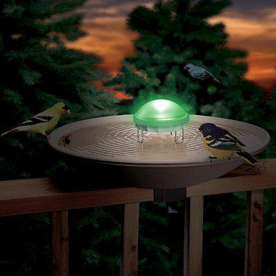 Aurora Water Wiggler for Bird Baths