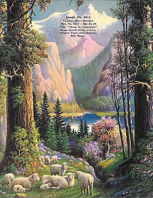 Sheep, Mt's, Snow, Lake, Tree Salesman Sample Calendar  9