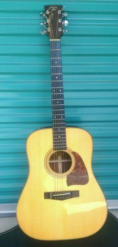 TAMA TG-80 solid wood vintage acoustic guitar project case