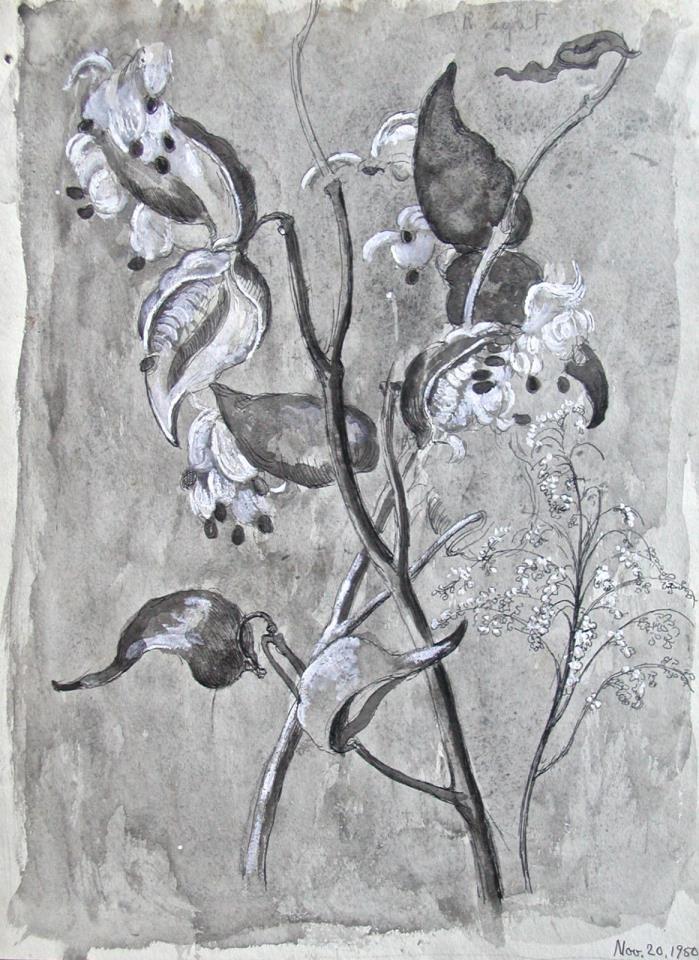 Dorothy Eaton Drawing (II)  Botanical