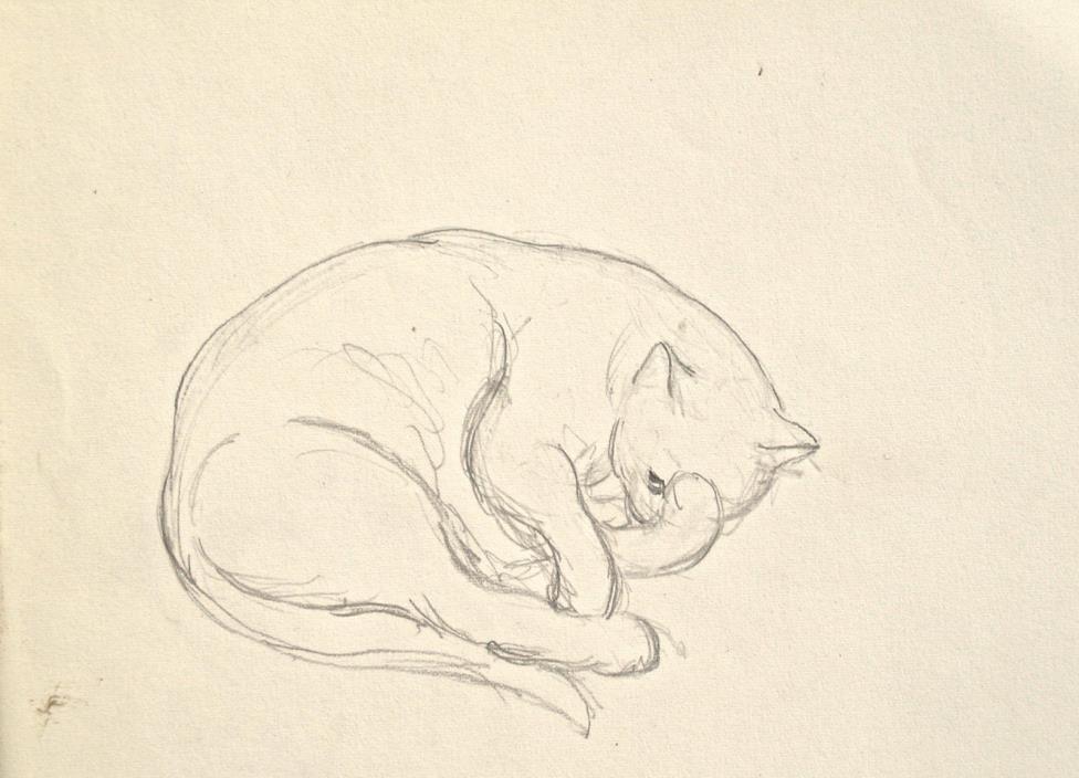 Dorothy Eaton Drawing (XXXIII) Cat