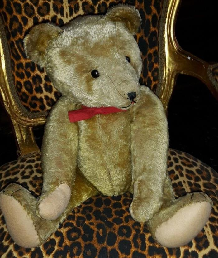 VERY RARE OUTSTANDING ANTIQUE STRUNZ TEDDY BEAR EARLY-1900