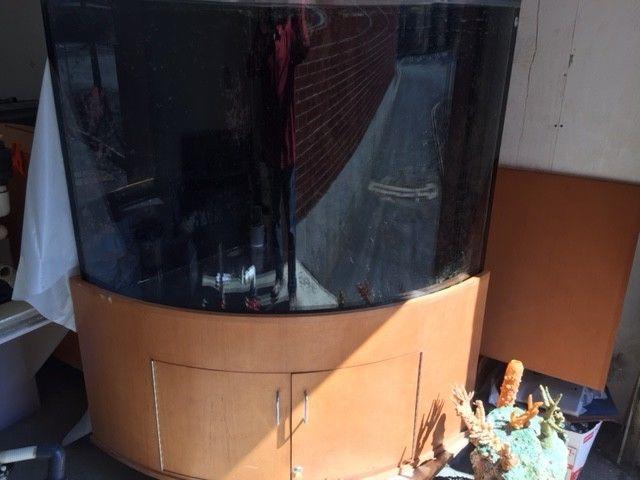 Fish Tank Corner For Sale Classifieds