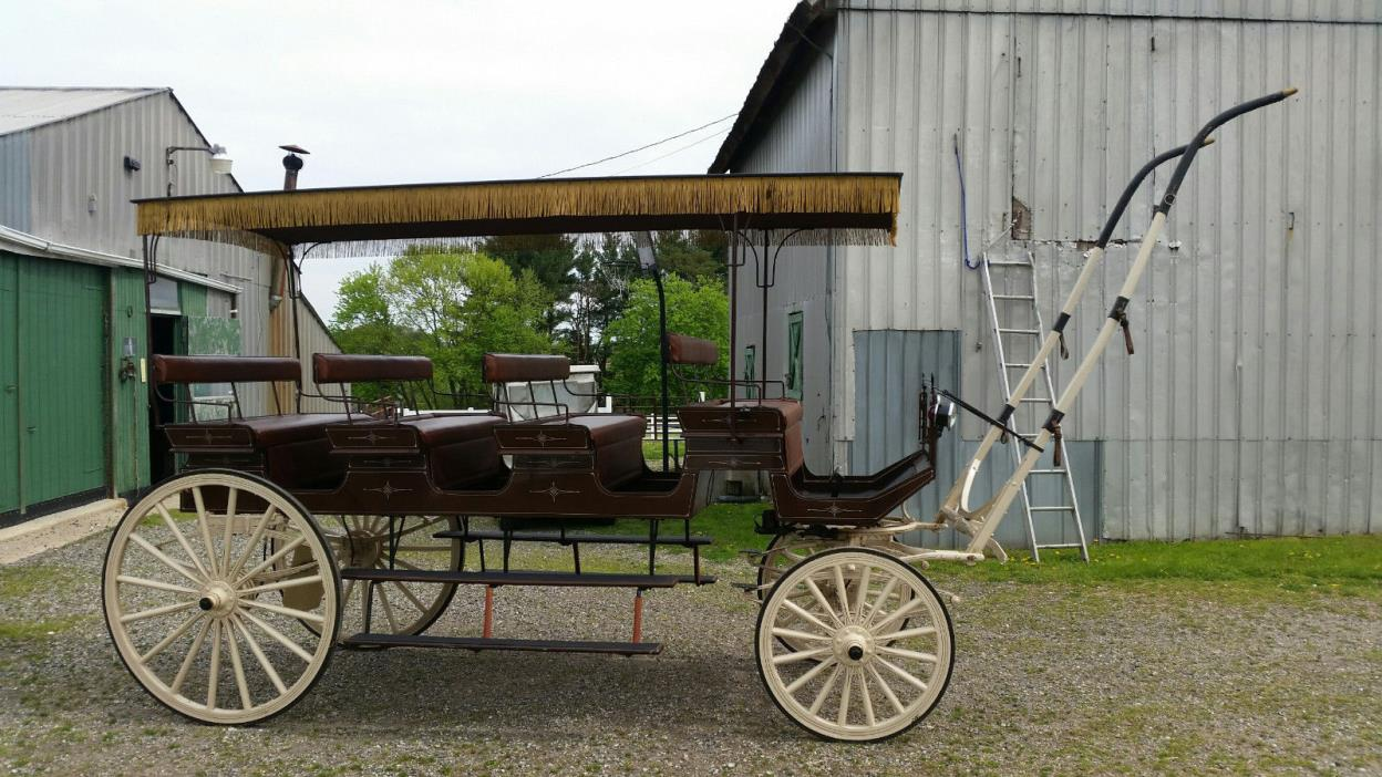 HORSE BUGGY 12 PERSON SEATER
