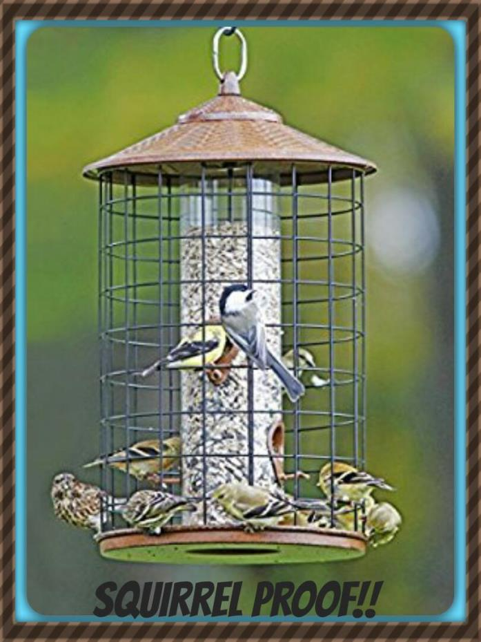 New HIATT Belle Fleur SQUIRREL PROOF Grande BIRDFEEDER Birds Love It! METAL ROOF