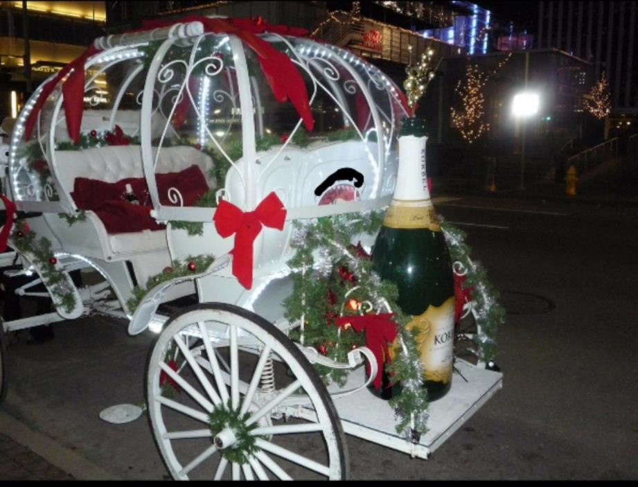 horse drawn wagon, Carriage, Visa Vis, Cinderella