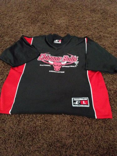 Nba Vintage Chicago Bulls Youth Jersey Sz Large(14-16) By Logi Athletic