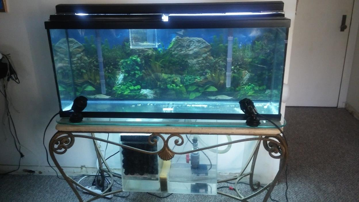 Fish tank filtration for sale classifieds for Used fish tanks for sale