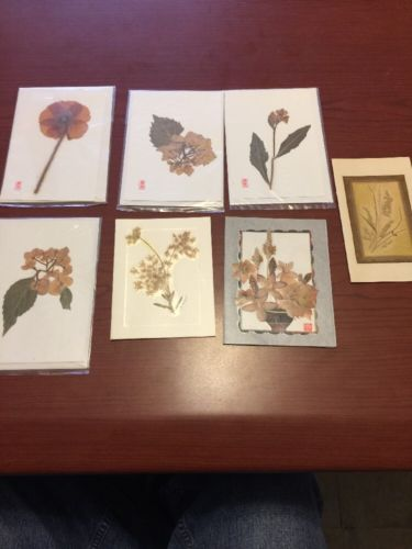Dried Pressed Flower Greeting Cards Lot Of 7