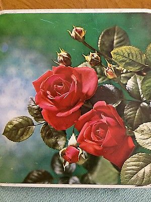 Vintage Red Rose Roses Square Tin Metal Container-Home Decor-Valentine