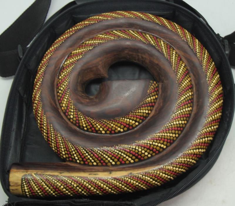 Spiralidoo Jackfruit + Sono Wood Didgeridoo Snake Pattern w Soft Case FREE SHIP